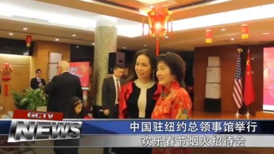欢度春节 中国驻纽约总领馆举办焰火招待会