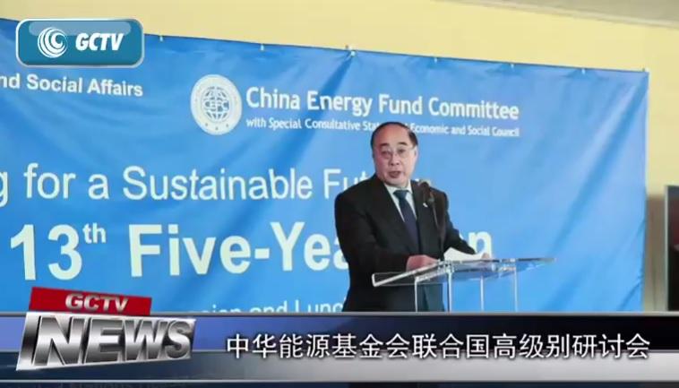 第三届联合国百万美元能源大奖 孟加拉国太阳能创业获得